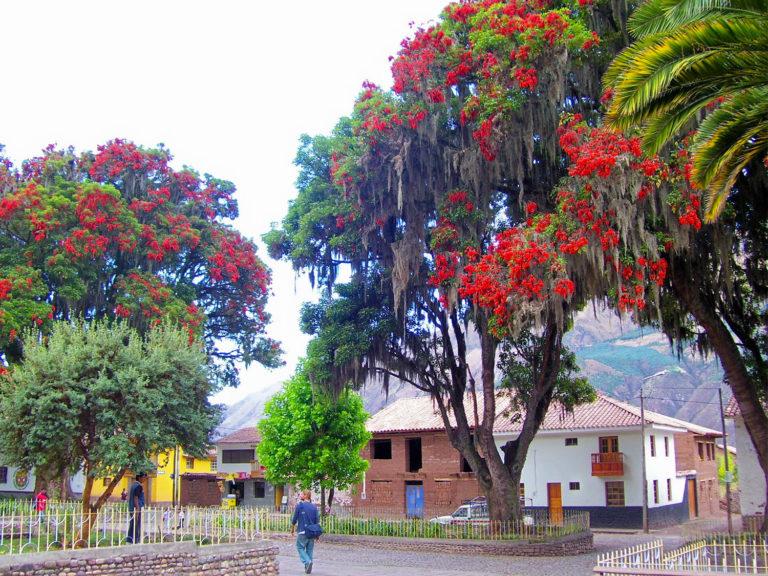 andahuaylillas (1)
